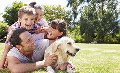 9 Questions to Answer When Choosing a Dog for Your Family | Dogster