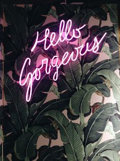 neon light sign 'hello gorgeous' // green leaves aesthetics, tumblr worthy, home dorm decor idea inspiration //