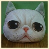 Description : ------------- Cute Cat Face Pillow With Core Adorable design cushion with soft texture! Perfect for gift and home decoration! Filling: PP Cotton. Cat Pillow, Cushion Pillow, Angora Cats, Cute Cat Face, Animal Faces, Pillow Design, Decoration, Plush, Animaux