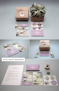 Branding for Petit Beast by Cathy Van Hoang