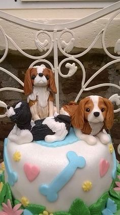 With yorkie instead Puppy Birthday Cakes, Puppy Birthday Parties, Puppy Dog Cakes, Sprocker Spaniel, Cavalier King Charles Spaniel, Biscuit, Beautiful Birthday Cakes, Fondant Animals, Pet Day