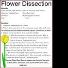 a chart and simple directions for a flower dissection project Ag Science, Plant Science, Kindergarten Science, Science Biology, Science Lessons, Science Education, Teaching Science, Science For Kids, Science Activities