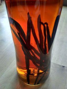 Vanilkový extrakt :: Crohnologie Shot Glass, Vase, Tableware, Dinnerware, Tablewares, Vases, Dishes, Place Settings, Shot Glasses