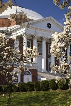 The Rotunda, UVA in spring