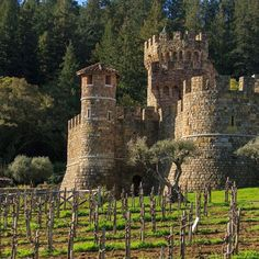 Wineries in the Napa Valley, including the really cool castle winery, Castello di Amorosa