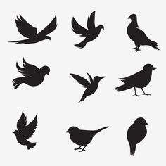 Bird silhouette collection Vector and PNG Silhouette Sport, Vogel Silhouette, Bird Silhouette Tattoos, Flying Bird Silhouette, Silhouette Painting, Silhouette Vector, Cartoon Silhouette, Silhouette Images, Shadow Painting