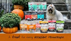 RSVP for #TreatRight Twitter Party for a chance to win $750+ in yummy prizes from Merrick Pet Care! #giveaway
