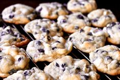 If you haven't tried the Blueberry Cream Cheese Cookies, then you are missing on something major. Make these blueberry cookies and relish the fun. Blueberry Muffin Mix Recipe, Blueberry Cheesecake Muffins, Blueberry Cookies, Blue Berry Muffins, Easy Welsh Cakes, Cream Cheese Cookies, White Chocolate Chips, Cooking Recipes, Eat
