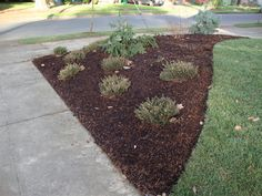 landscape ideas for corner lot - Google Search