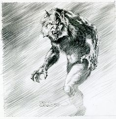 Werewolf by Bernie Wrightson