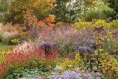 Summer might be over but the gardening season is not as evidenced by this beautiful late-summer garden which marries small and medium-sized plants with great fall colors. You can easily replicate it in your own garden.