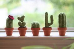 You will love this collection of Crochet Cactus Patterns and we have all the most popular ideas with lots of free patterns and video tutorial included. Crochet Home, Love Crochet, Beautiful Crochet, Crochet Yarn, Cactus Amigurumi, Crochet Cactus, Crochet Flowers, Crochet Designs, Crochet Patterns