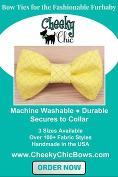 Gold and Rust Copper Polka Dots Bow Tie Dog Cat Collar Washable
