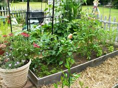"Manuela's ""How To Build a Raised Bed"" garden post."