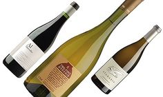 Unusual wines from the old and new worlds