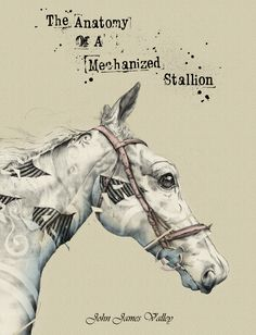 The Anatomy Of A Mechanized Stallion Horse Galloping, First Contact, Horse Head, Book Photography, My Drawings, Childrens Books, Anatomy, Novels, Horses