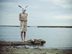 I AM  Bunny   Joao Carlos Photography