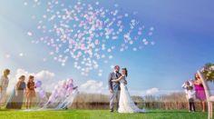 bodas maruserra