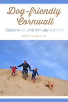 Finding good days out for kids and dogs can be a challenge. Here's a guide to attractions that will be a hit with the whole family in dog-friendly Cornwall Devon And Cornwall, Cornwall England, Dog Travel, Family Travel, Travel Tips, Dog Beach, Beach Fun, Day Trips Uk, Things To Do In Cornwall