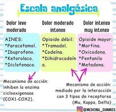 Med Student, Dental, Health, Tips, Summary, Nursing, Nurse Stuff, Med School, Good Night Msg