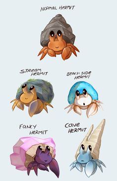 """hauntedsketchbook: """"Back at it again with more pokemon variants! Gosh Pokemon are so fun to practice character design skillz on I highly recommend. Pokemon Breeds, Pokemon Memes, Cute Pokemon, Hermit Crab Habitat, Hermit Crabs, Curious Creatures, Mythical Creatures, Animal Drawings, Cute Drawings"""