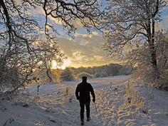 Fiona Foley Croft writes: 'I attach some snow pics from Old Malton, North Yorkshire. This is the track we take from behind St Mary's Priory church to the River Derwent. The lone figure is Howard Croft (my husband)  trudging towards the Derwent in Old Malton, across an area know locally as The Gannock.'