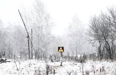 30 Years After The Chernobyl Disaster, This Land Is Run By Wild Animals