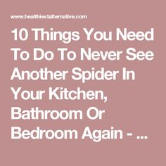 10 Things You Need To Do To Never See Another Spider In Your Kitchen, Bathroom Or Bedroom Again - The Healthiest Alternative