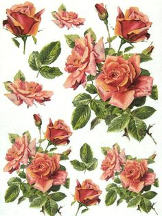 Ricepaper/Decoupage paper,Scrapbooking Sheets /Craft Paper Vintage Red Roses