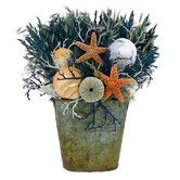 Found it at Wayfair - Del Mar Shell Table Top Wreath