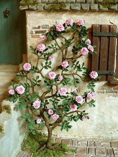 all things mini: Pink rose vine