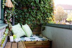 banc en palettes et coussins des bougies et plantes grimpantes