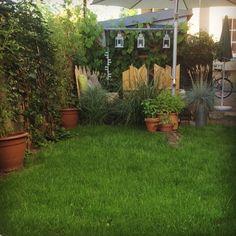 Neuer Rasen im haaremacherLOFT  Garten. Proud!!!!!