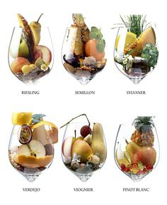 Italy Fine Wines - Find the best italian wines online - Wine aromas made simple