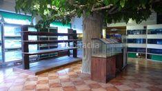 Foto 8905-img2503376-6670814. Alquiler local comercial  amplio local de esquina con gran escaparate y almacén en elche / elx