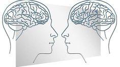 O Reforçamento no Behaviorismo