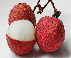 Conheça a fruta que pode deixar você com barriguinha sarada | Jornal Ciência