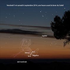 v/  @GuillaumeCannat  ·  Sep 4  Demain et samedi à l'aube, tentez d'observer Vénus juste à côté de Régulus à l'est-nord-est - http://autourduciel.blog.lemonde.fr/2014/09/01/les-plus-beaux-rendez-vous-astronomiques-en-septembre-2014/