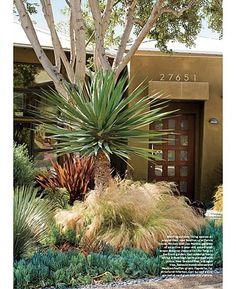 paradis express: Garden Design Magazine, JAN-FEB. 2010