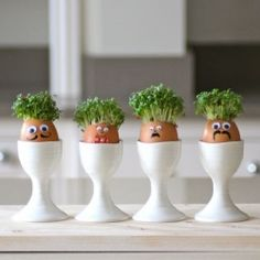 Fun project to do with kids - make these cress men and decorate with pens and embellishments.