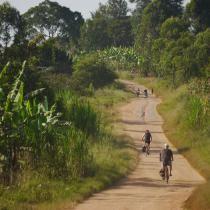 Radreise Uganda und Ruanda | Radsafari und Gorilla-Trekking Uganda, Safari, Country Roads, Europe, Tours, Places, Tropical Rain Forest, National Forest, Travel Destinations