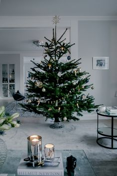 50 Minimalist Christmas Decorations That are Refreshing and Luxurious - Hike n Dip Here are best Minimalist Christmas decorations for your inspo. Simple & Natural Christmas decor are great for modern homes, small spaces or budget decors. Minimal Christmas, Natural Christmas, Christmas Mood, Noel Christmas, Rustic Christmas, Simple Christmas, Minimalist Christmas Tree, Christmas Swags, Christmas Tree Decorations