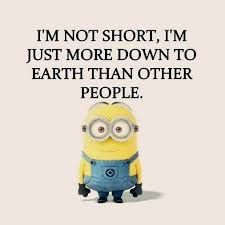 Image result for funniest minions quotes