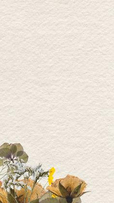Paper Background Design, Powerpoint Background Design, Flower Background Wallpaper, Flower Backgrounds, Textured Background, Wallpaper Backgrounds, Simple Iphone Wallpaper, Iphone Wallpaper Video, Aesthetic Iphone Wallpaper