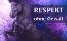 Pferd Respekt gewinnen