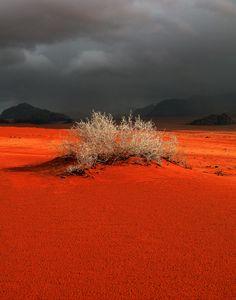 Red sands at Wadi Rum, Jordan.