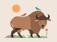 Buffalo (Updated) by Matt Anderson Buffalo Animal, Baby Buffalo, Buffalo Shirt, Character Illustration, Graphic Design Illustration, Graphic Illustration, Buffalo Cartoon, Children Sketch, Animal Sketches