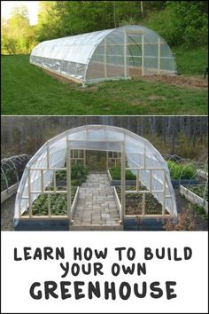 If you want a greenhouse but don't want to spend a lot with buying one, build your own!