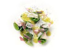 Lorenzo Cogo | foto Bob Noto | Involtini di rapa marinata, Kiwi fermentato, acciughe sotto sale e petali di carciofo di Albenga