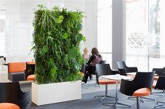 Växtvägg på hotellMed en växtvägg får du en inomhusmiljö utöver det vanliga.#131#sv-se